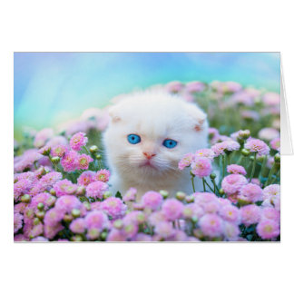 White Kitten And Purple Flowers Blank Note Card