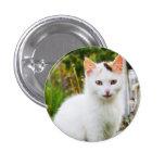 White Kitten Button