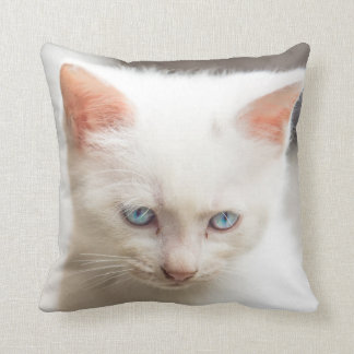 White Kitten Cushion