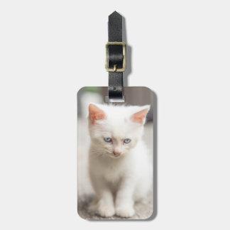 White Kitten Luggage Tag