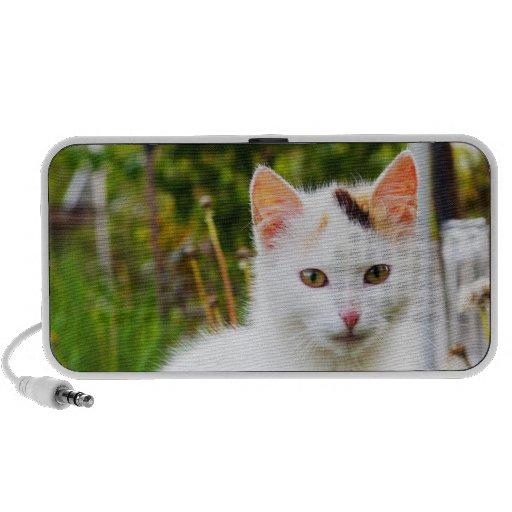 White Kitten Speaker