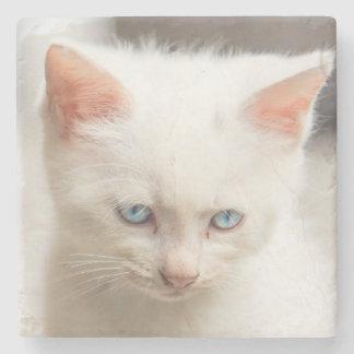 White Kitten Stone Coaster