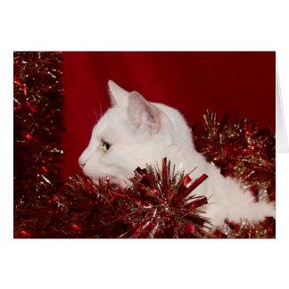 White kitty Christmas Card