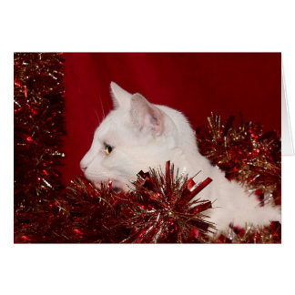 White kitty Christmas Greeting Card