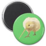 White kiwi bird Magnet