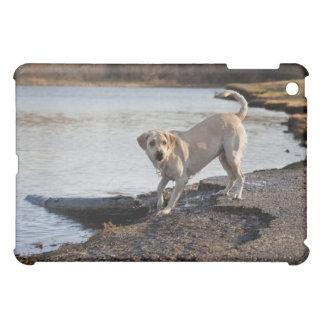 White Labrador near a lake iPad Mini Case
