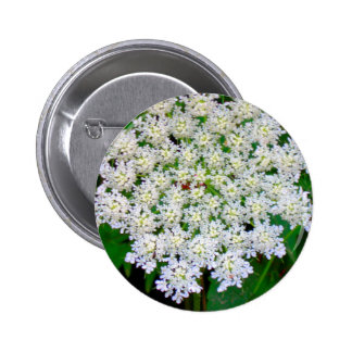 White Lace Hydrangea 6 Cm Round Badge