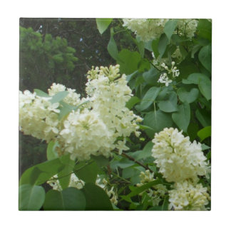 White Lilac Flowers Tile