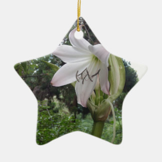 White Lily Ceramic Star Decoration