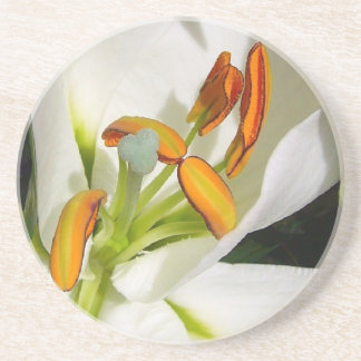 White Lily Drink Coasters