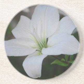 White Lily Coaster