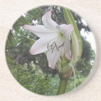 White Lily Beverage Coaster
