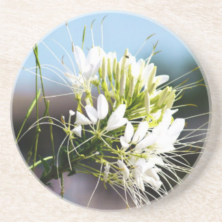White lily flower drink coaster