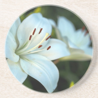 White Lily Flower Coasters