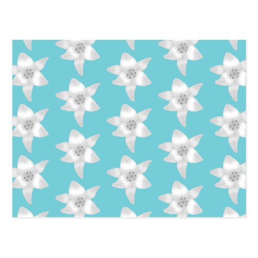 White Lily Flowers on a Teal - Turquoise Color. Postcards