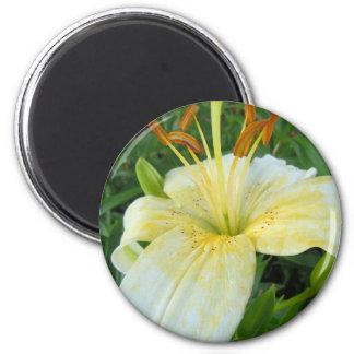 White Lily II 6 Cm Round Magnet