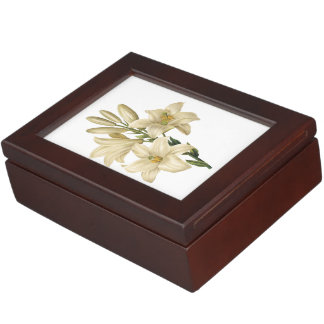 white lily(Lilium candidum) by Redouté Keepsake Box