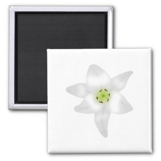 White Lily. Square Magnet