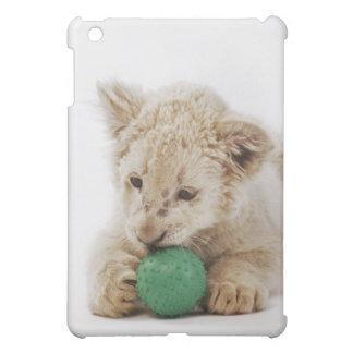 White lion cub (Panthera leo krugeri) playing iPad Mini Cover
