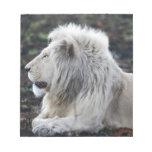 White lion in repose memo pads