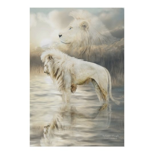 White Lion - Reflection Of Light Fine Art Poster