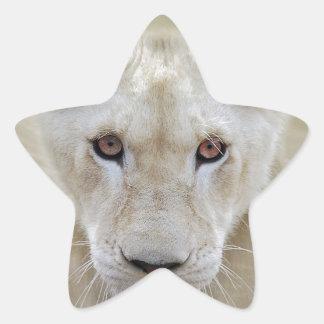 White Lion Spirit Warrior Africa Star Sticker