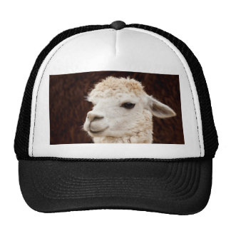 White Llama Trucker Hat