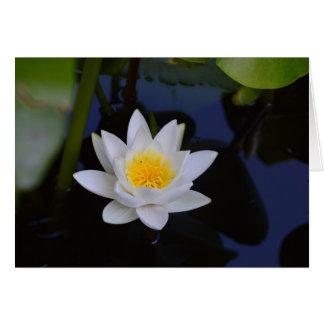 White Lotus Blank Card