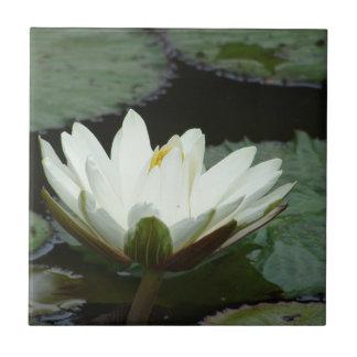White Lotus Flower Ceramic Tile