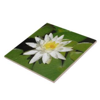 White Lotus Large Square Tile