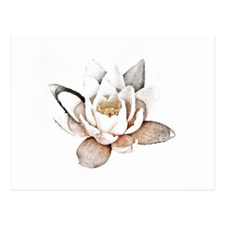 WHITE LOTUS POSTCARD