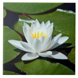White Lotus Water-lily Ceramic Tile Trivet