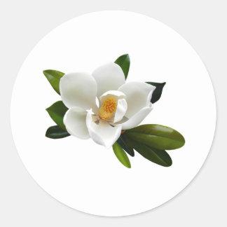 white magnolia bloom classic round sticker
