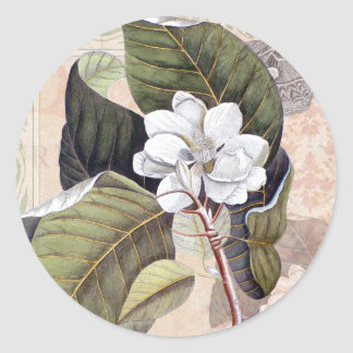 White Magnolia Blossom Vintage Botanical Round Sticker