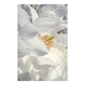 White Magnolia Flower stationery custom