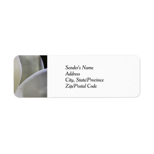 White Magnolia - Return Address Labels