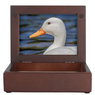 White Mallard Duck Memory Box