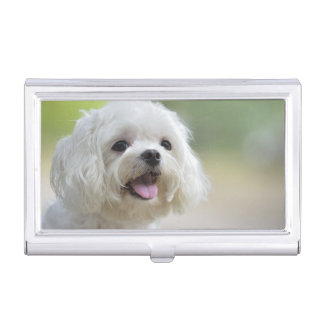 White Maltese Dog Business Card Holder