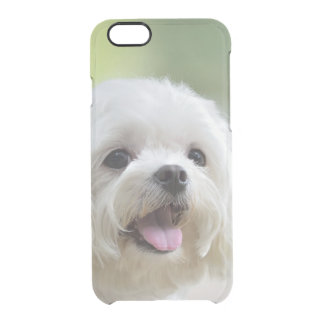 White Maltese Dog Clear iPhone 6/6S Case