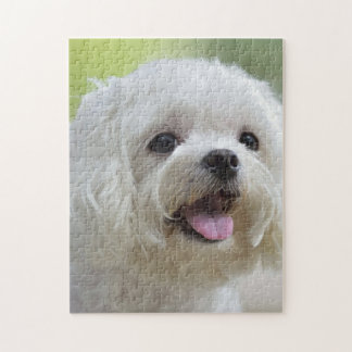 White Maltese Dog Jigsaw Puzzle