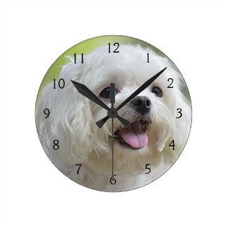 White Maltese Dog Round Clock