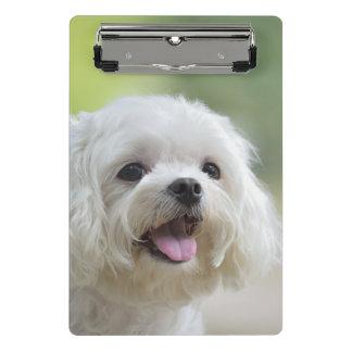 White maltese dog sticking out tongue mini clipboard