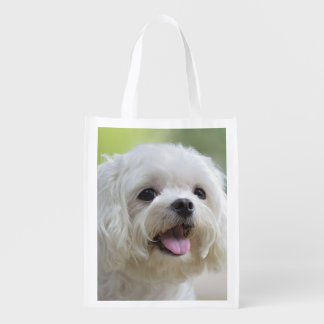 White maltese dog sticking out tongue reusable grocery bag