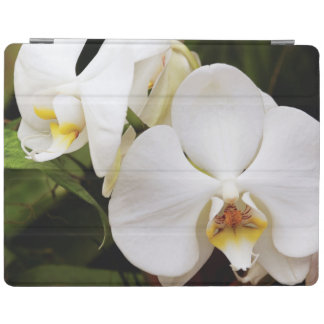 White Moon Orchid (Phalaenopsis Aphrodite) iPad Cover