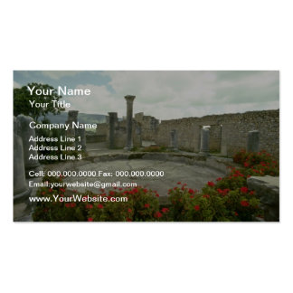 White Morocco, Roman ruin flowers Pack Of Standard Business Cards