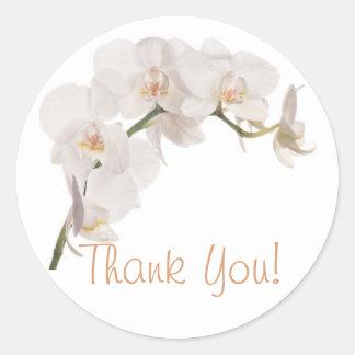 White Moth Orchid Round Sticker
