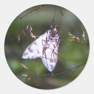 white moth round sticker