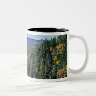 White Mountain N.F., NH. The view from near Two-Tone Coffee Mug