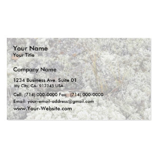 White Mountains National Recreation Area, Lichen Pack Of Standard Business Cards