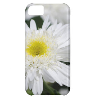 White Mums iPhone 5C Cover